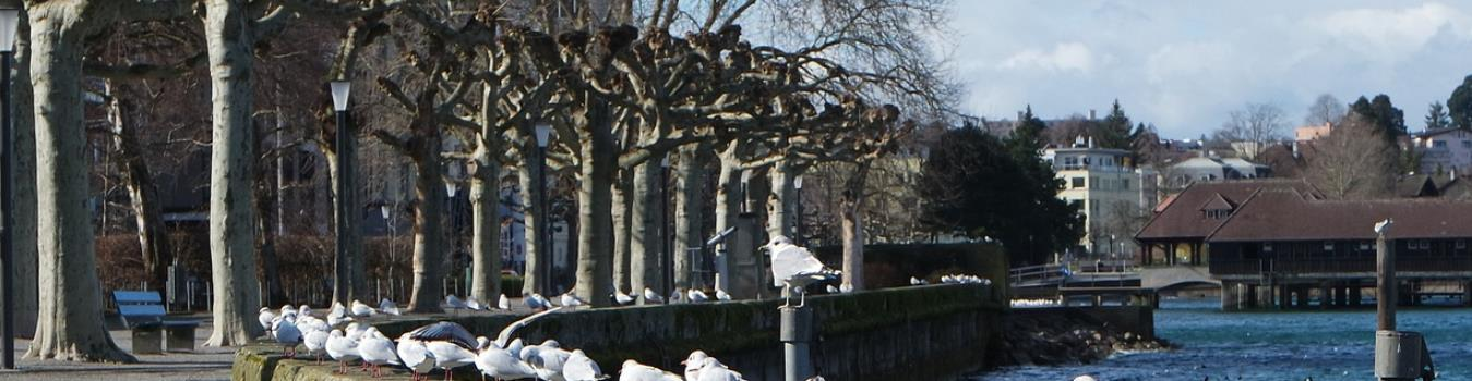 Bodensee Radweg – Zweite Etappe